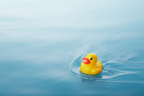 Join Our Team for the Great Brevard Duck Race for a Great ...